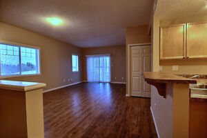 Beautiful 2 Bdrm Condo with New Flooring & Paint Edmonton Edmonton Area image 2