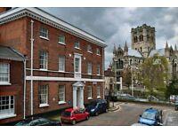 Great room in Lovely flat on best street in Norwich!