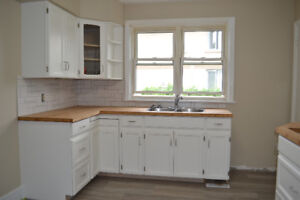 Bright, Renovated 3-bedroom available August 18th