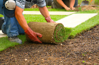 Sod installation 50% off starting at $0.80 per sqft call today!
