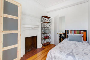 VALOTORIAN APPARTEMENT NEAR MCGILL - FURNISHED & ALL INCLUDED
