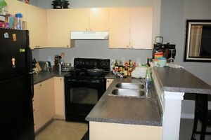 2 Bedroom condo apt on ravine! Oakville / Halton Region Toronto (GTA) image 3