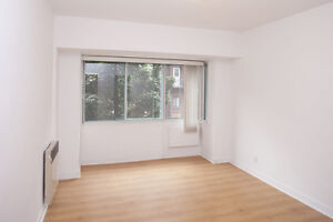 IDEAL downtown Plateau MCGILL! 3 1/2 3.5  2 months FREE