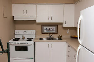 FURNISHED EXECUTIVE RIVERFRONT CONDO Sarnia Sarnia Area image 4