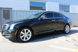 Professional & Certified  Window Tinting service