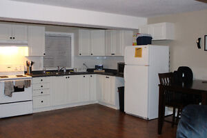 1 Bedroom Apartment. Available January 1st Cambridge Kitchener Area image 5