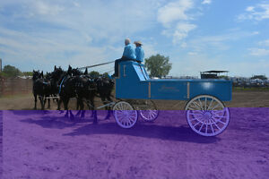Heavy Horse Show Wagon, Cart and accessories.