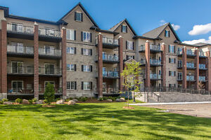 BRAND NEW!!! GREENWICH CONDO 2 BEDS & 2 BATHS - AVAIL SEPT 1ST