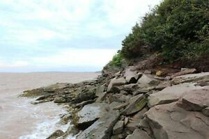 61.5 acres WATERFRONT New Brunswick! For sale/trade! Oceanfront! Kingston Kingston Area image 2