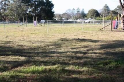Horse agistment Ingleside PADDOCKS AVAILABLE NOW!