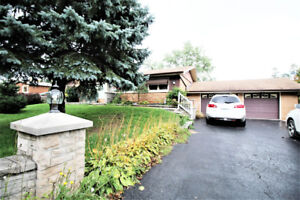 Large updated bungalow main floor for lease in Ancaster