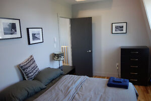 Beautiful One-Bedroom Loft near Agricola - Sept 1-April 30, 2018