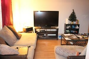 1br Walkout Basement Unit for Rent Close to Chinook and DT