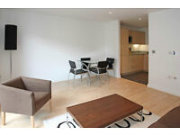 MODERN 1 BEDROOM APARTMENT IN CANNING TOWN