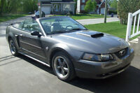 Ford Mustang GT Cabriolet 2004 40 anniversaire