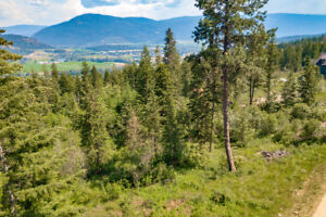 Proposed Lot 1 Terry Road - 5 Acres Waiting for You!