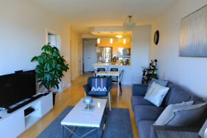 Luxury Apartment - River View (The Plaza) for rent - 1  BR + Den