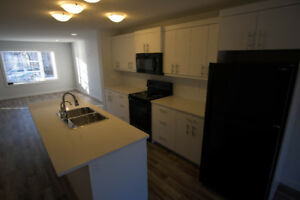 Feb. 1 - House for Rent in Cathedral - 2081 McTavish