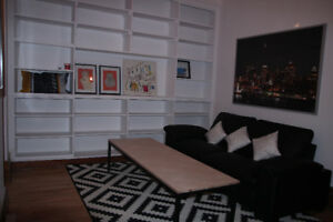 ROOM SHARE PLATEAU BEAUTIFUL RENOVATED APARTMENT (C)