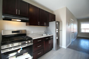 HOTTEST APARTMENT IN HAMILTON NEAR JAMES ST AND GO STATION!