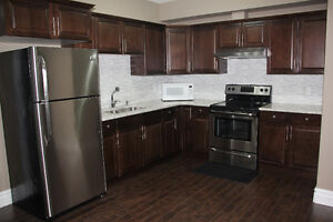 1 Bedroom available in Legal Basement Suite