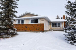 Exceptional Value Renovated Bungalow with Separate Side Entrance