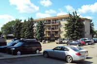 2 bedroom Apartment - Rocky Mountain House