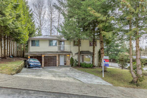 Need Space? Great 8 Bedroom/6 Bathroom Family house in Burnaby!