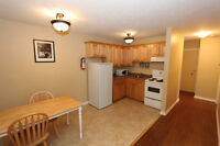 Mountain Road - Furnished 1 Bedroom Available Now