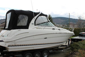 300 SeaRay Boat