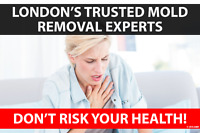 London Area Mold Removal / Remediation, Mould Inspections.