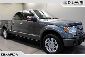 2010 Ford F150 Platinum Supercrew 4WD