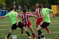 Sky United FC - recherche des joueurs pour venir jouer à 11 ou 7