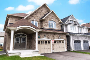 New Build Home For Rent In Georgina!