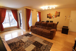 BEAUTIFUL 2-BEDROOM CONDO 15 MIN TO DOWNTOWN OF MONTREAL