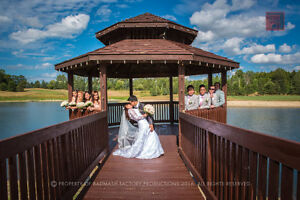 Wedding Photography and Videography | Professional Hi-Quality Stratford Kitchener Area image 4