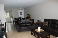 2 Bedroom Apartment - Newly renovated - Excellent Location