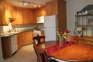 Furnished Exec Condo/Apt in NW - $1400 /1500 incl utl – June 1