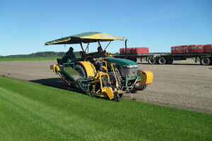 Affordable, Locally Grown Kentucky Bluegrass Sod