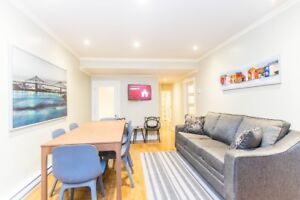 BEAUTIFUL RENOVATED AND FURNISHED 3 BEDROOM APT IN MCGILL GHETTO