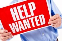 Permanent Part Time (leading to Full Time) Job Available