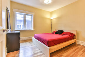 Room for rent, Sandy Hill, January to May