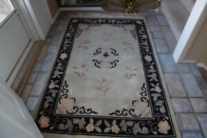 Beautiful Plush rug