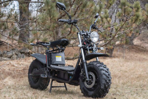 The Beast Electric All-Terrain Scooter