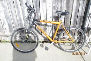 Mountain Bike 18spd.