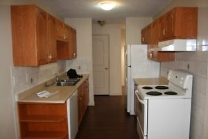 Renovated 3 Bed Apartment near UofA. 1 Month Free Rent!