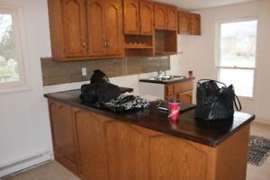 Kitchen cabinets with sink and facet