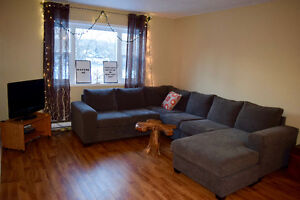 Jan. 1st- One bedroom, carpet free $615/month