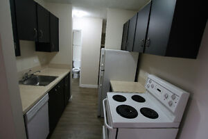 Recent Reno Downtown 1 BR unit ***$935***May 1st