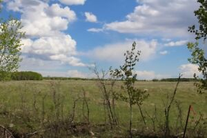 11 Ac. with  trees and open space at Sunset View Turtle Lake!